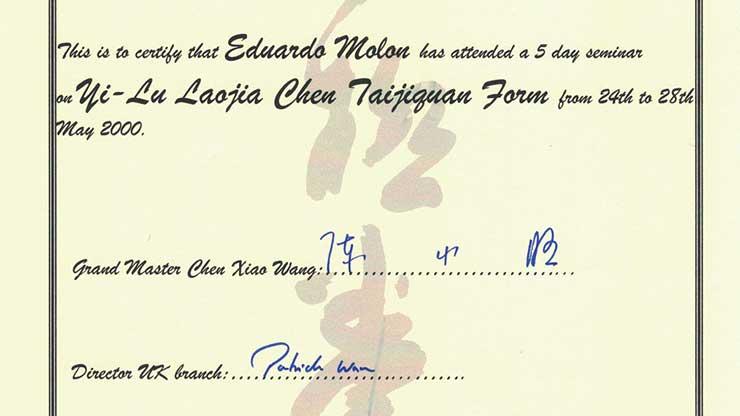 England Taijiquan Seminar Diploma