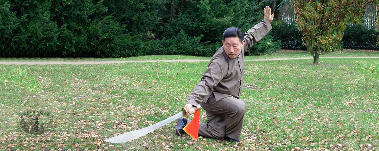 Os cinco níveis de Kung Fu – III