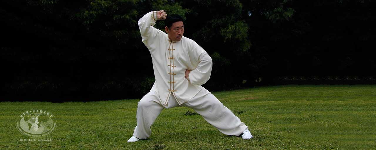 Os cinco níveis de Kung Fu – II
