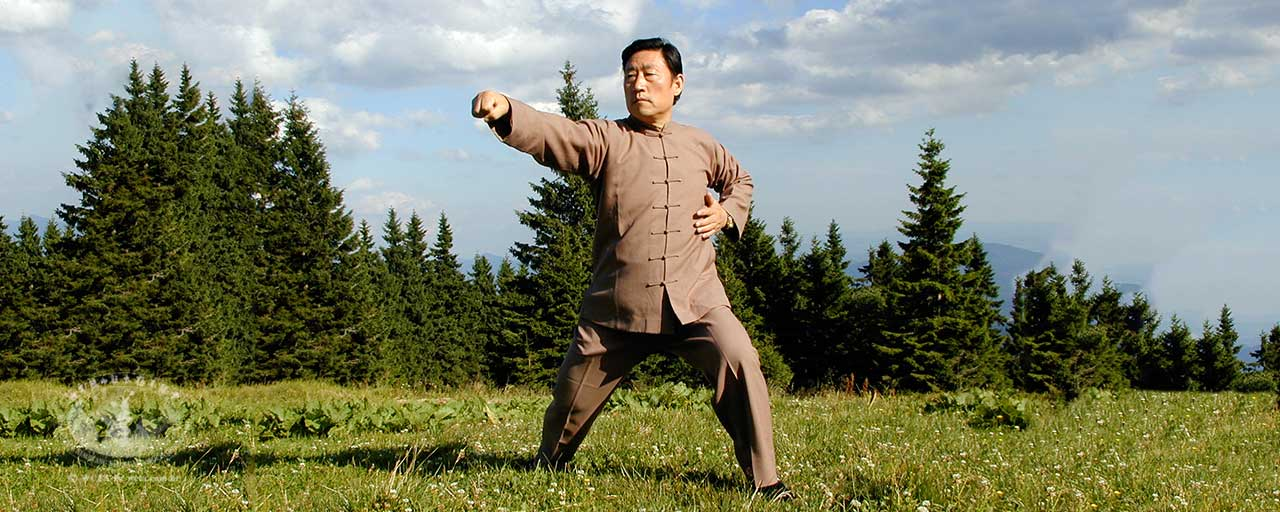 Os cinco níveis de Kung Fu – IV