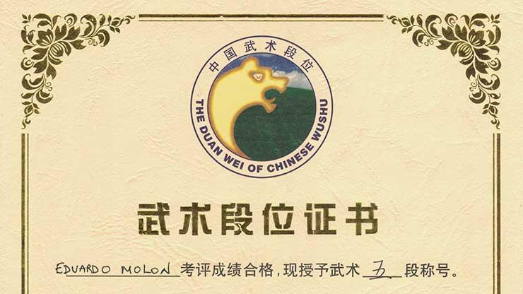 Duan Wei