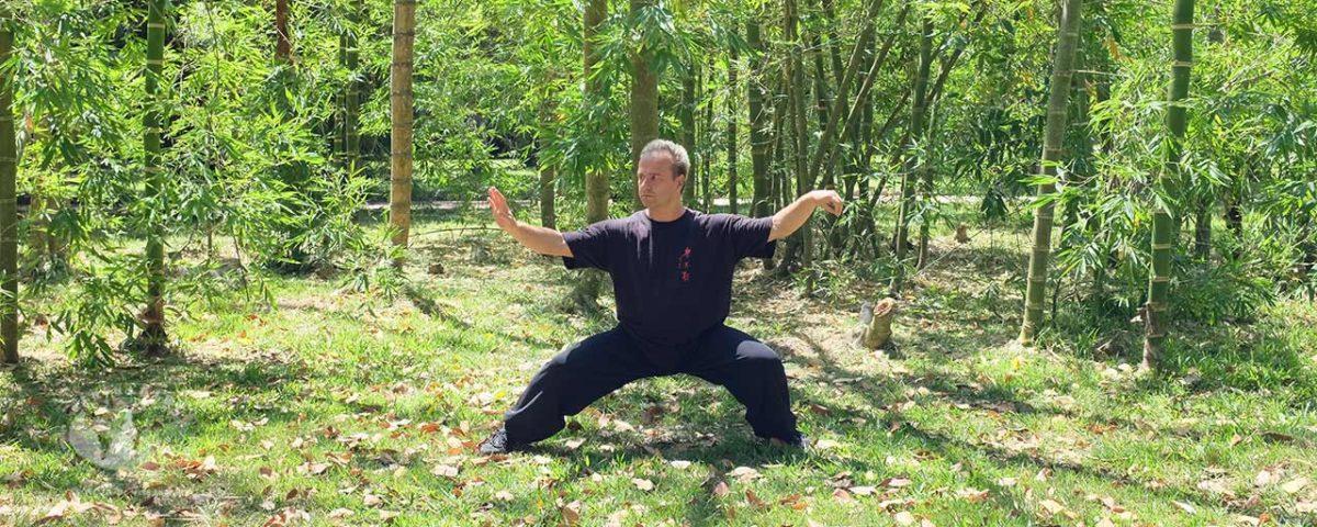 Os cinco níveis de Kung Fu – comentário