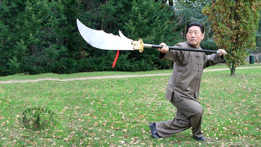 Os cinco níveis de Kung Fu – I