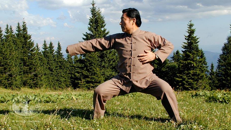 Os cinco níveis de Kung Fu – V