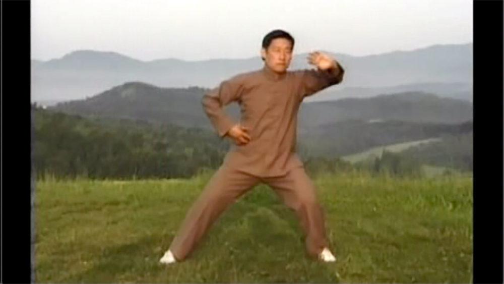 Zhanzhuang e Desenrolar a Seda (uma mão)
