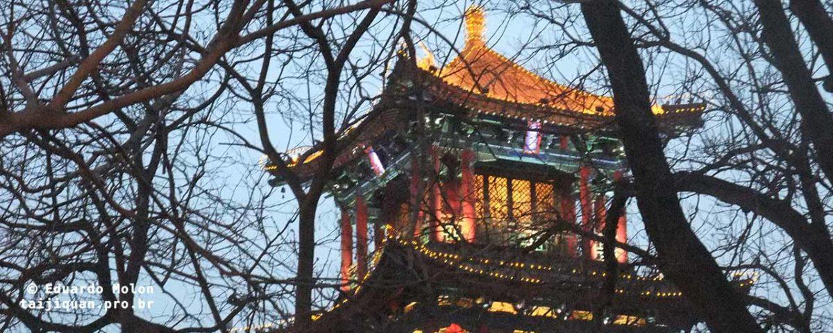 Taijiquan: perdido num mundo digital